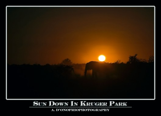 Sun-down-in-Kruger-Park-copy