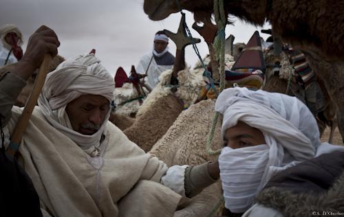 Festival Sahara (40 di 47)